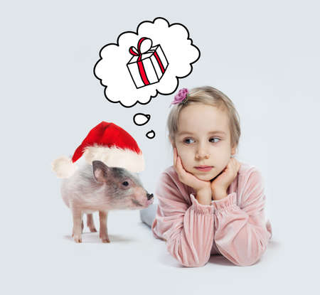 Little child girl and pig in Santa hat on white background. Christmas child and pet