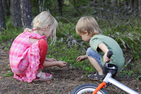 Two children playing in a forest. Kids looking on a small insects Stock Photo