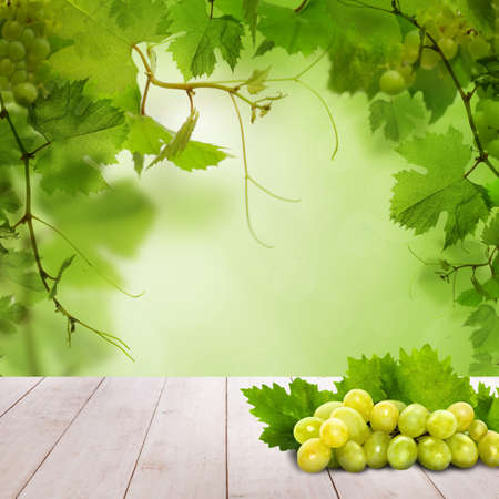 Green grapes on white wooden table against abstract green leaves background Banque d'images - 122475747