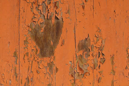 Orange Wooden Background, Wood Texture with paint