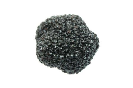 Truffle mushroom. Black gourmet truffle mushroom isolated on white background