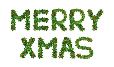 Holly With Berry Letters alphabet. Holly Leaves with berry's in the form of the merry Xmas. Isolated on white