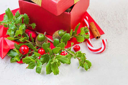 Xmas concept with winter holly leaves, red berries and gift