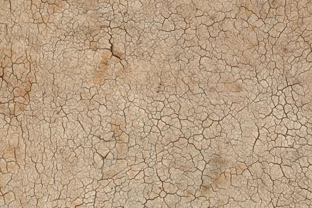 Dried and Cracked ground. Cracks on the surface of the earth.