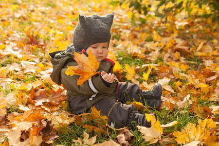 Cute little baby boy while sitting on the ground with fall leaves, autumn portrait