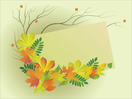 Vector  illustration with the place for text with a composition from autumn leaves Vector