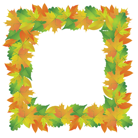 fall images: Frame of autumn leaves