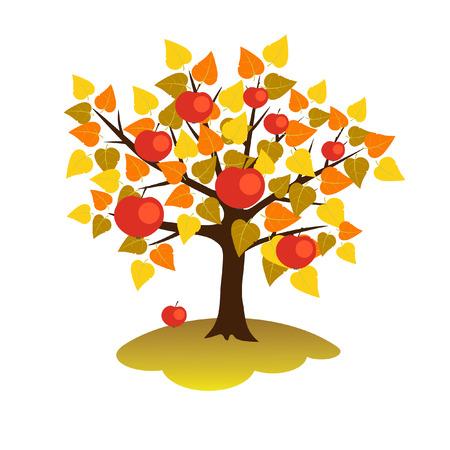 Tree in autumn  Illustration