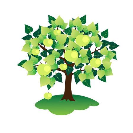 Tree in  summer.  Stock Vector - 7614061