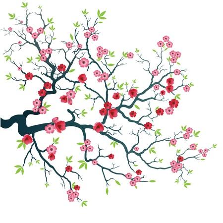 virágzó: Fa ága a virágok és levelek.