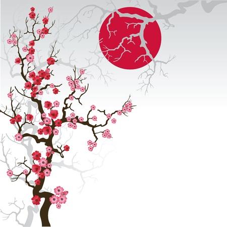 Illustration of flowering branch of Sakura
