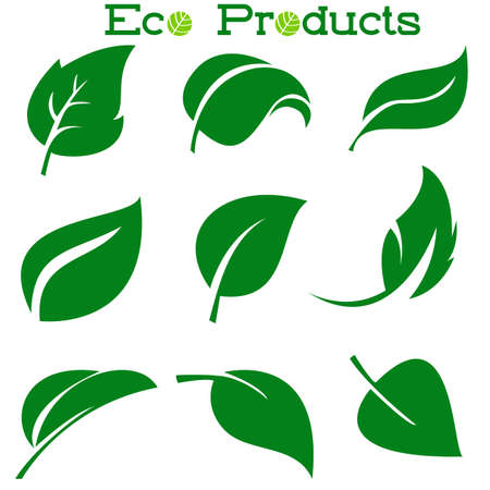 Leaves icon vector set isolated on white background. Various shapes of green leaves of trees and plants. Elements for eco logos.