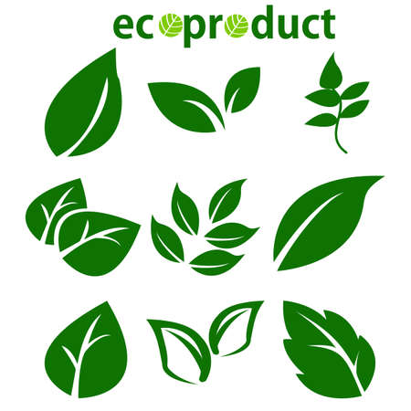Green Leaves Collection. Leaves icon vector set isolated on white background. Various shapes of green leaves of trees and plants. Elements for eco and bio logos. Ecology symbol.Vector Illustration Illustration