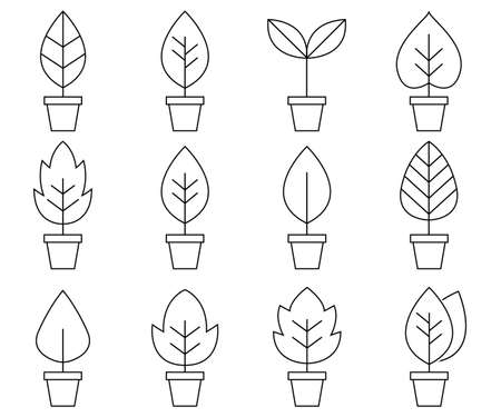Set of Leaf Line Minimal Icon.