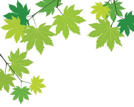 background leaves Иллюстрация