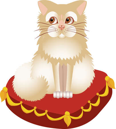 White kitten on a red pillow Stock Vector - 10621392