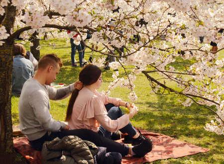 Vilnius, Lithuania - 04 22 2019: Couple enjoing sakuras at Sugihara park Editorial