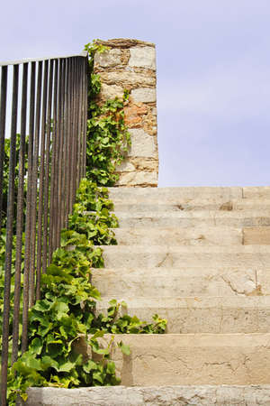Warm tone stairway to bright sky with green plant crawling up the stairs