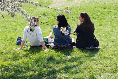Vilnius, Lithuania - 04 22 2019: Three young women sitting on green lawn enjoying sakuras