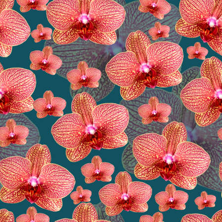 Pink orchid with red veins seamless pattern 版權商用圖片