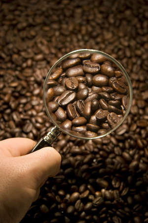 Inspecting Coffee Beans with a magnifying glass photo