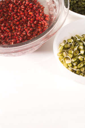 bean sprouts: Fresh Nutrional Bean Sprouts