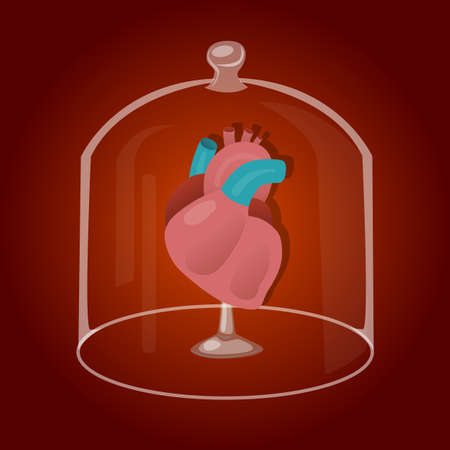 Red heart inside glass jar. Vector Illustration isolated on white background. Illustration