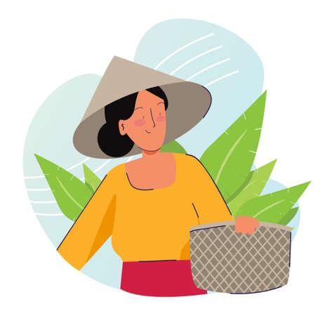 Granjero de la mujer que lleva a cabo la cesta que lleva la tapa en la cosecha de la plantación de la hoja del tabaco o del té. Agricultura tradicional naturaleza orgánica