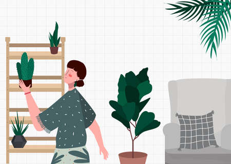 woman puts her collection plants green cactus on a shelf as decoration in the living room vector flat illustration