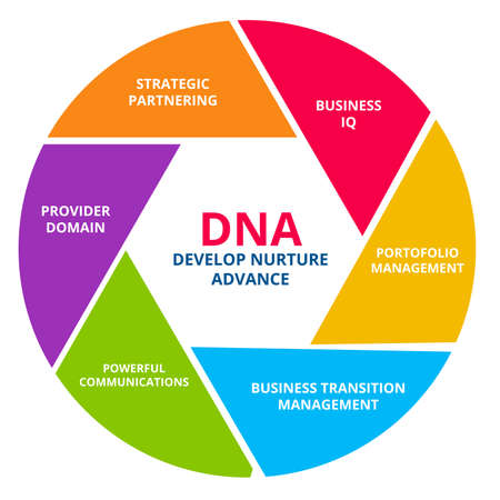 DNA develop nurture advance business IQ portfolio management business transition management powerful communications provider domain strategic partnering in diagram with colorful flat style vector design