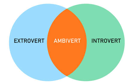 extrovert introvert ambivert intersection diagram infographics with flat style