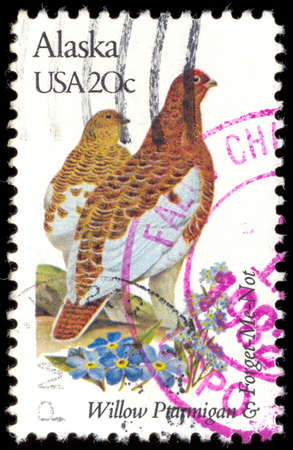 alaskian: USA - CIRCA 1982: A stamp printed in United States of America shows Alaskian Willow grouse, State Birds and Flowers Issue 1982,