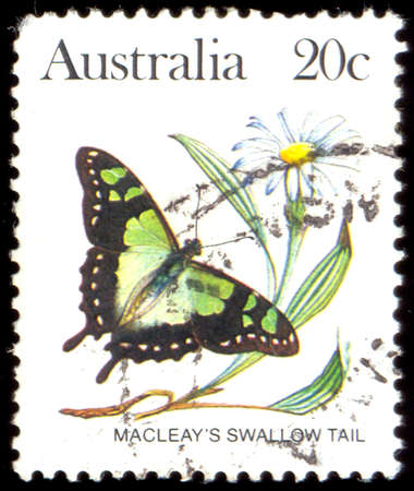 illustrating: AUSTRALIA - CIRCA 1983:A Cancelled postage stamp from Australia illustrating Australian Butterflies, issued in 1983.