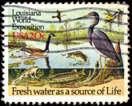 fauna: EE.UU. - CIRCA 1984: un sello impreso en los EE.UU. muestra una vida de la fauna acu�tica, dedicada a Louisiana Exposici�n Mundial en Nueva Orleans, alrededor de 1984