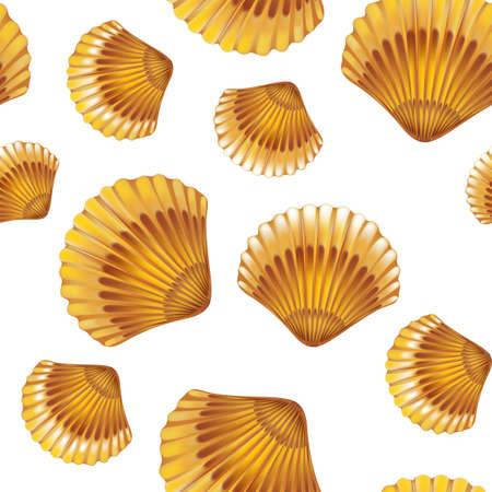 Shells on white background seamless. illustration.