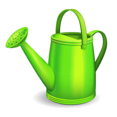 Green watering can. illustration.