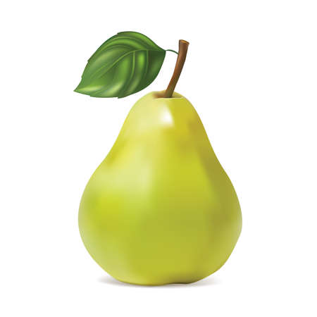 Pear on white background. Isolated. Vector illustration. Vetores