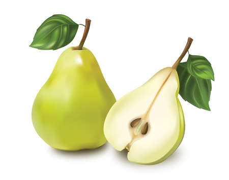 branch cut: Two green pears isolated on white background