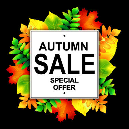 autumn leafs: Autumn sale banner with colorful autumn leafs. Vector illustration.