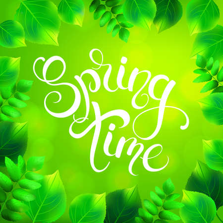Spring time handwritten calligraphy lettering on green leaves background. Vector illustration.
