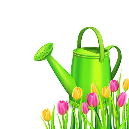 Spring background with colorfull tulips and watering cans. Vector illustration. Illustration
