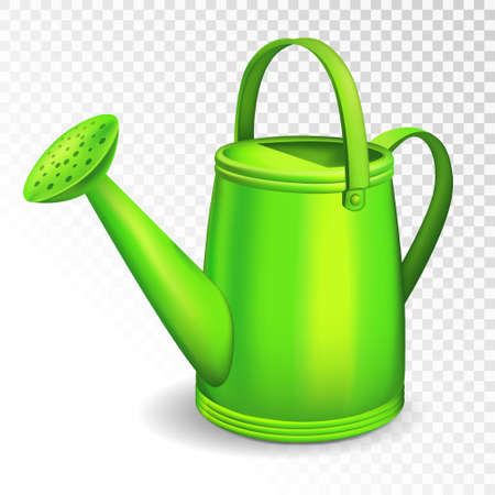 Green watering can isolated on transparent background. Vector illustration.