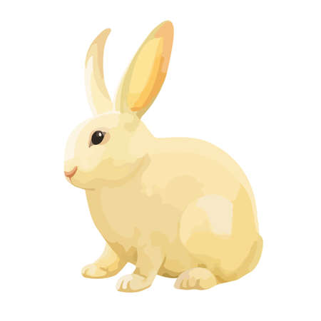 Cute bunny isolated on white background. - Vector