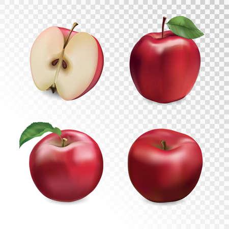 Red apple set. Vector illustration. Stock Illustratie