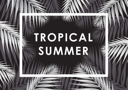 Tropical summer banner with palm leaves and frame. Vector illustration. Stock Illustratie