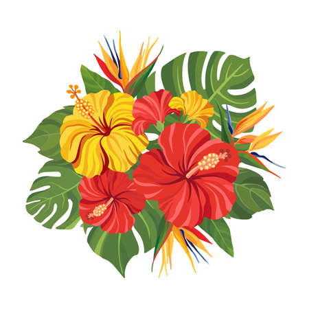 Tropical flowers bouquet. Floral composition with hibiscus, strelitzia, palm leaves and monstera. Vector illustration.