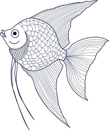 scalar: Scalar. Sketch of aquarium fish.Vector Illustration