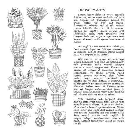 crassula: Hand drawn card template with cute house plants in pots including cactus, dracena and others. Vector collection of doodle plants