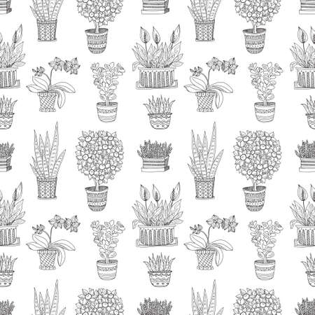 house plants: Seamless pattern with cute hand drawn house plants in pots. Vector collection of doodle plants