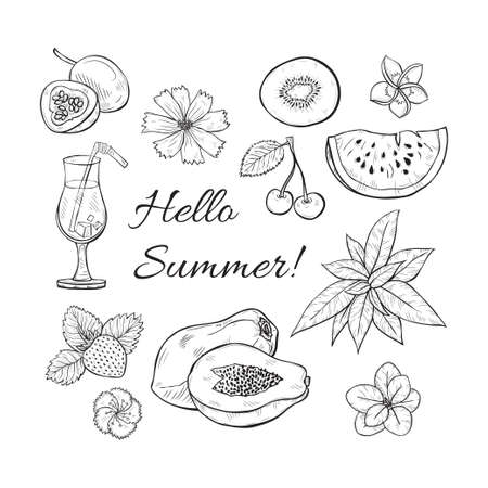 Summer fresh fruits and flowers. Vector